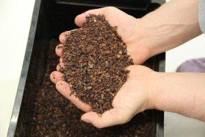Murskattuja kaakaopapuja / Cacao nibs