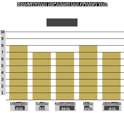 Brasstown Nicaraguan O'Payo 70%